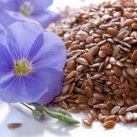 Семена льна срок хранения
