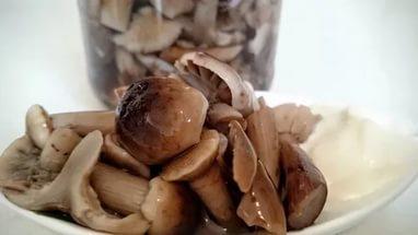 Температура хранения соленых грибов