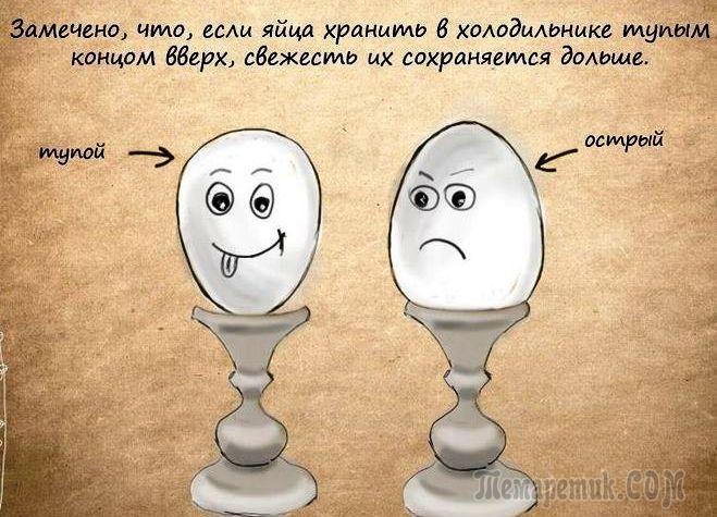 сколько можно хранить вареные яйца в холодильнике - технология